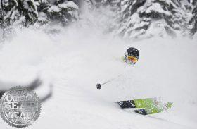 Les meilleurs skis de l'hiver en promo sur Glisshop !