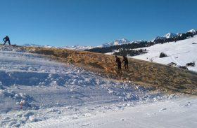 Les Saisies conservent leur neige avec … du bois !
