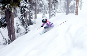 Skis ROXY 2017 : nos coups de coeur !