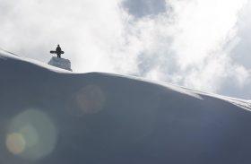 DC Snowboards : Nouveautés 2017 !