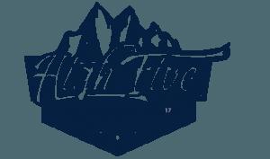 Logo Highfive Festival 2017