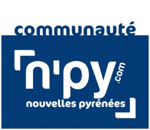 logo npy