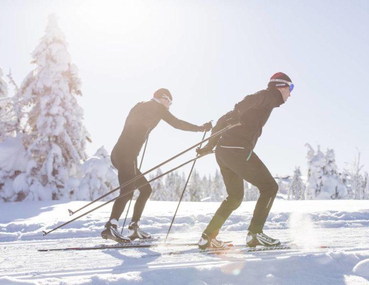 Comment choisir ses skis de fond skating ?