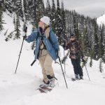 que savoir avant de commencer le ski de rando